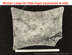 ox hide recovered