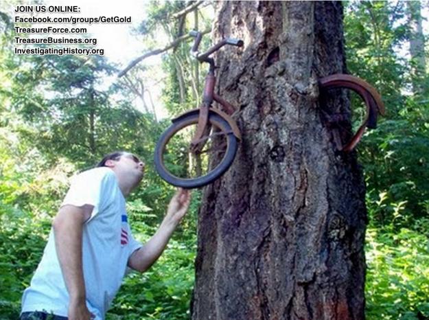 TREE !