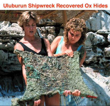 wreck ox hides 1