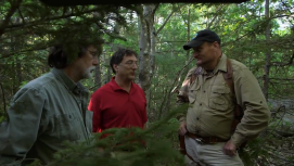 Hutton discussing discocery with Rick and marty lagina PHOTO CREDIT History Channel Curse of Oak Island and Aubrey raiford
